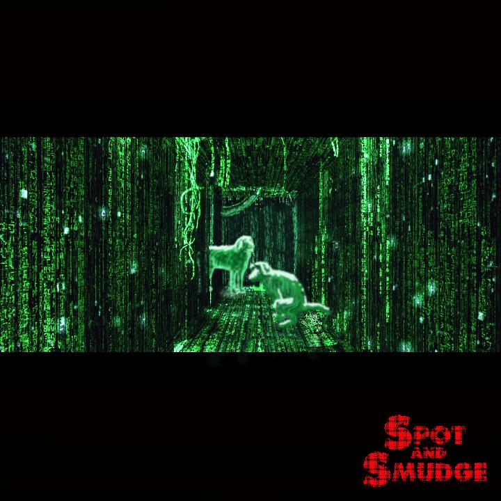 Matrix 720x720 300dpi