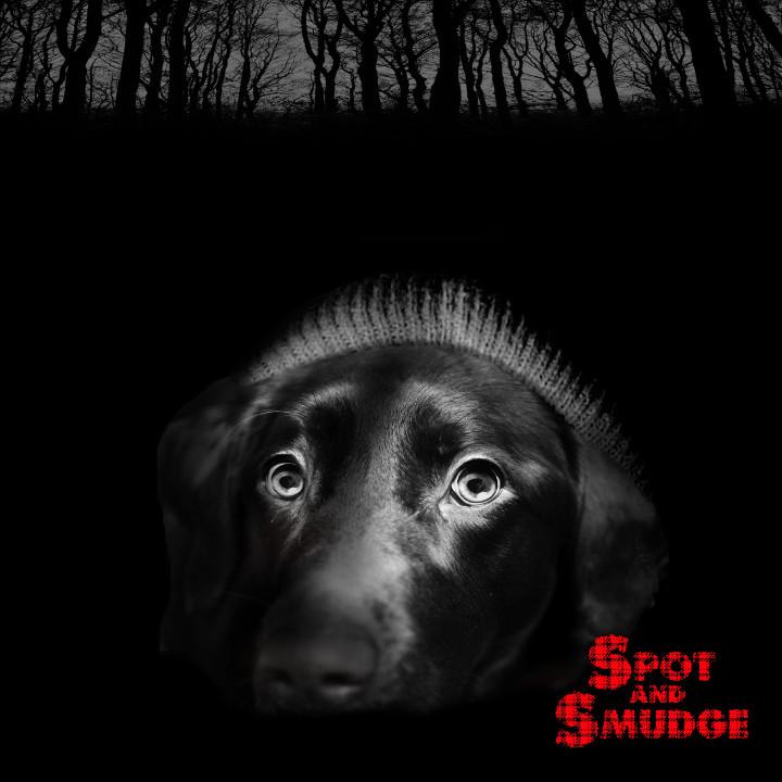 blair witch dog 720x720 300dpi