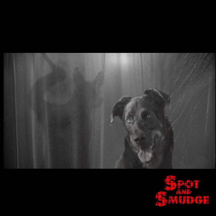 psycho shower dogs 720x720 300dpi